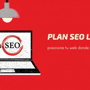 Plan SEO light